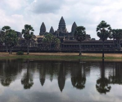 animale protejare angkor wat 1