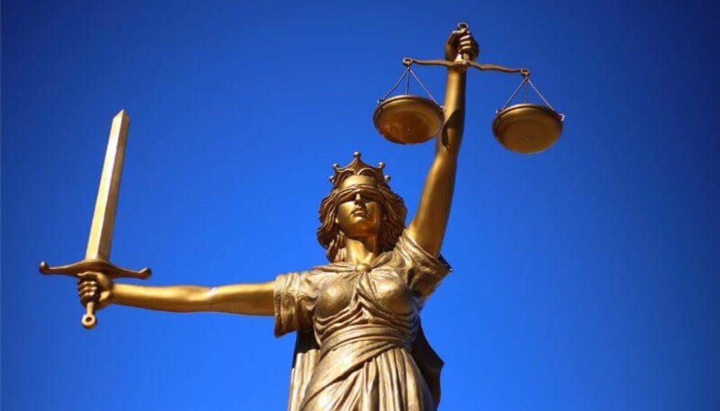 Harvad introduce un program care învață viitorii avocați cum să lupte pentru drepturile animalelor, valvegan, vegan