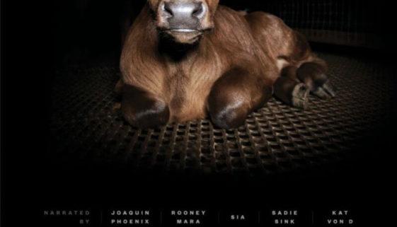 Cum arată exploatarea animalelor în documentarul Dominion 0