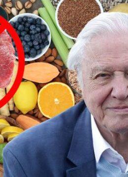 sir-david-meat-plant-based