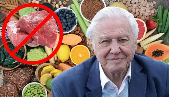 sir-david-meat-plant-based