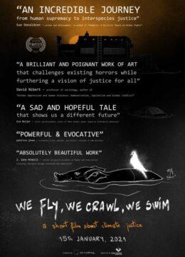 Poster-film scurt metraj just wondering - We Fly, We Crawl, We Swim