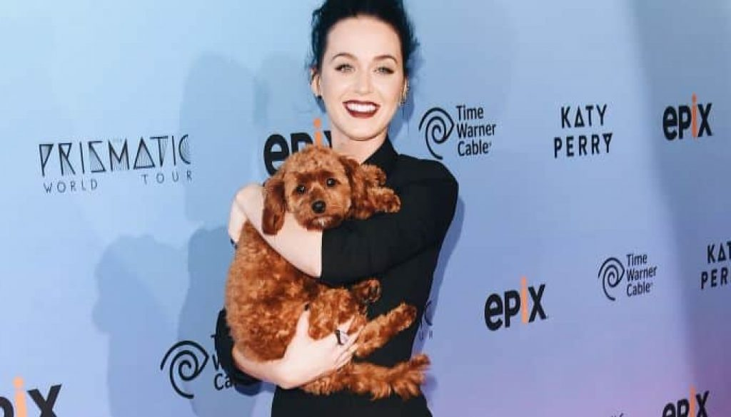 vegan-plant-based-katy-perry